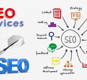 Who is SEO professional