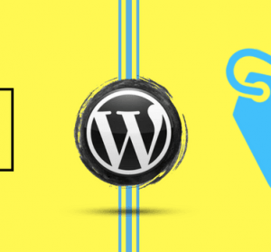 What is SEO Categories and Tags in WordPress