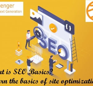 what is SEO Basics? Learn the basics of site optimization