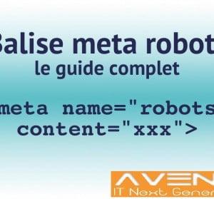 La balise Meta robots