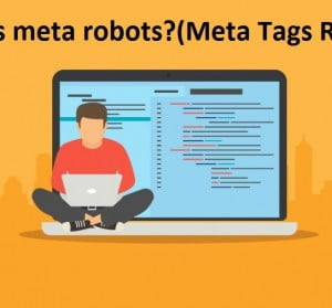 types of robots meta tags