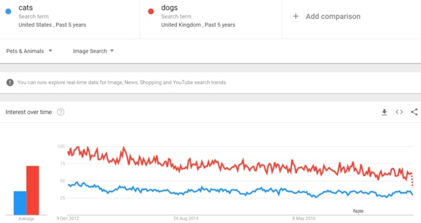 Google Trends and SEO