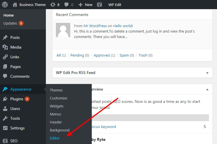 Go to the WordPress Editor section