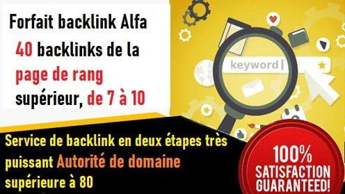 Firfait SEO Sur La Page - De basePackage Alpha, 40 backlinks permanents à partir du Page Rank 10 + Site 40 jours Rank Augmentation Rank