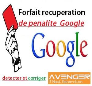 Services de récupération de pénalité Google